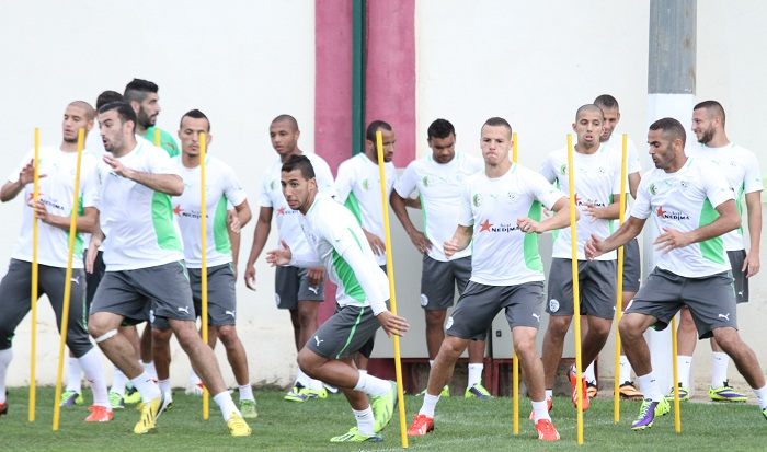 El Kharda neu training 2